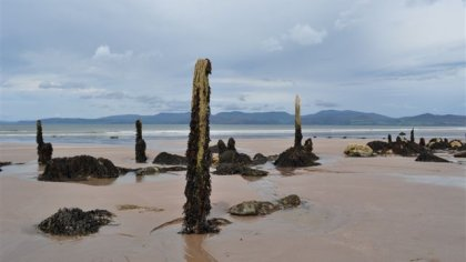 Rossbehy beach, Co. Kerry