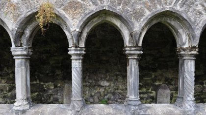 Sligo Abbey, Co. Sligo
