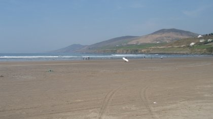 Inch beech, Co Kerry